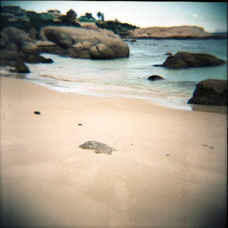 Cape Town, Sør-Afrika: Boulders Beach