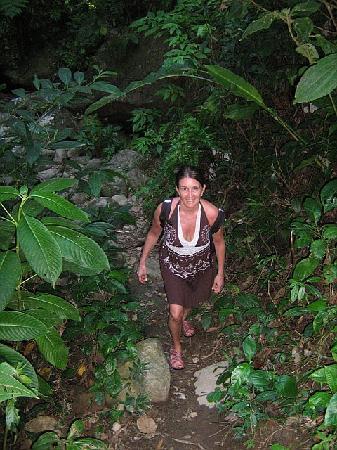Calibishie Cove: Hiking to Syndicate Falls