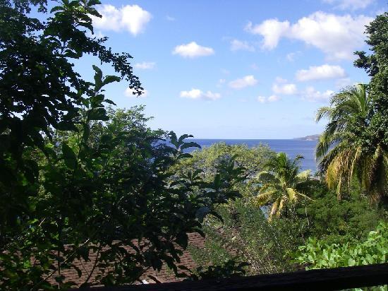 Hummingbird Inn: Blick vom Balkon