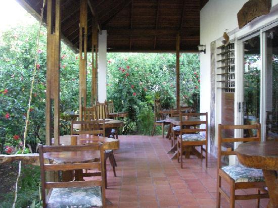 Hummingbird Inn: Frühstücksterrasse