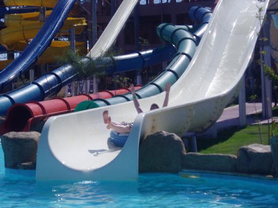 Jungle Aqua Park: Water slides!