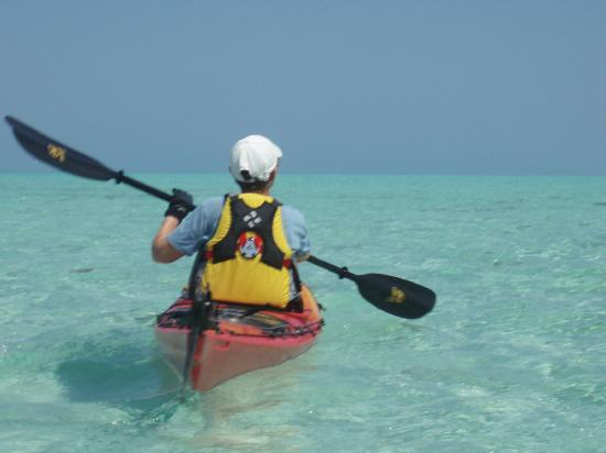 Long Caye Resort: Kayaking with Slickrock Glover's Reef