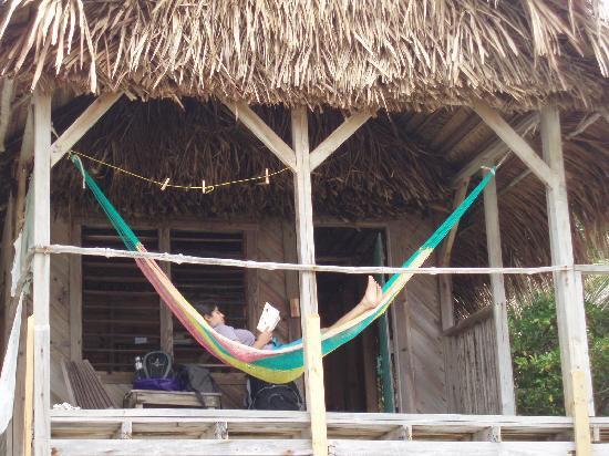 long caye resort  every cabana  es with a hammock  every cabana  es with a hammock    picture of long caye resort      rh   tripadvisor