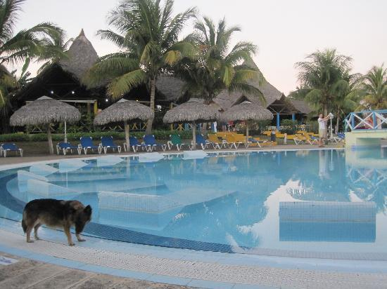 Hotel Club Kawama: A gorgeous pool and Club Kawama's mascot.