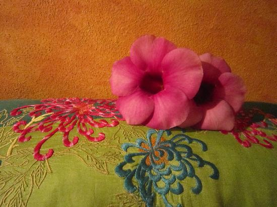 Hotel Cielo Rojo : Fresh flowers on your pillow each night