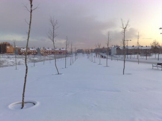 Leganés, España: Sin pisar la nieve. (O'hara)