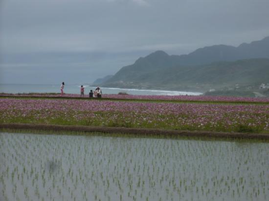 Hualien County, Taiwan: One of my favorite photo taken.