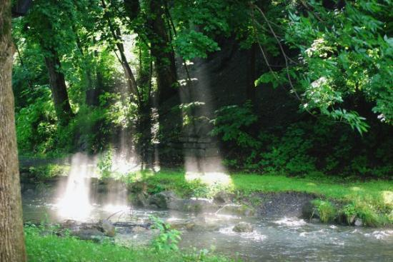 ซีราคิวส์, นิวยอร์ก: Now this is one of my favorite pictures. This was at Elm wood park in Syracuse. ( The Creek is a