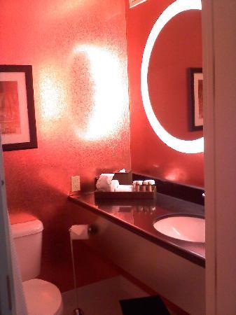 Cambria Hotel & Suites Chicago Magnificent Mile: Very cool bathroom..only photo that turned out!