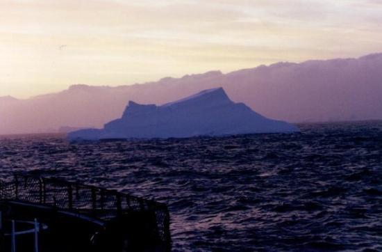 Elephant Island: Antarctica.