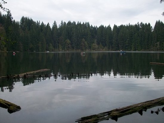 ‪Lacamas Lake‬