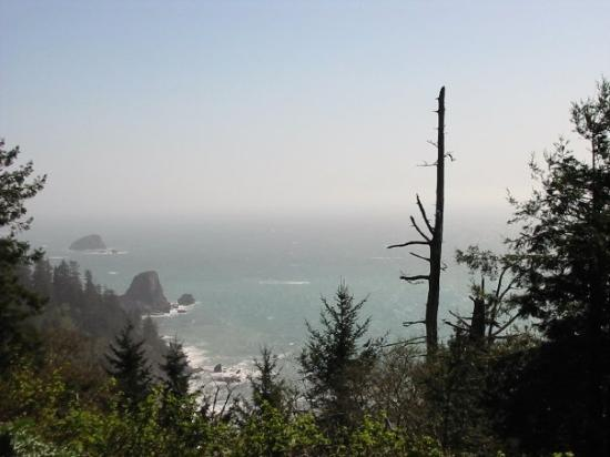 Brookings, Oregón: Southern Oregon Coast