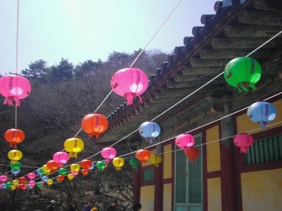 Bilde fra Gyeongju