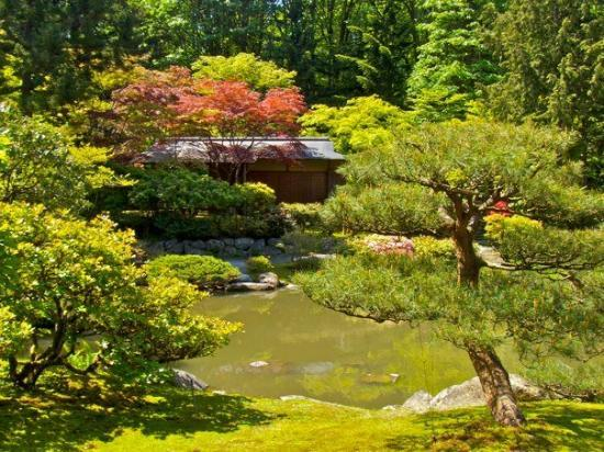 Seattle Japanese Garden: Washington Park Arboretum (Seattle): Top Tips Before You