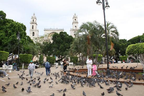 Merida, Mexico: central plaza