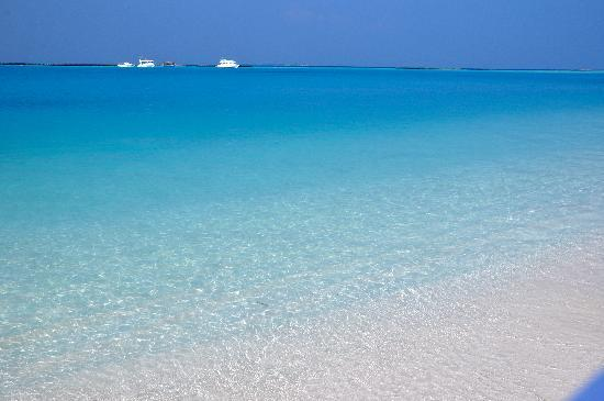 The Sun Siyam Iru Fushi Maldives Blue Colour Of Ocean