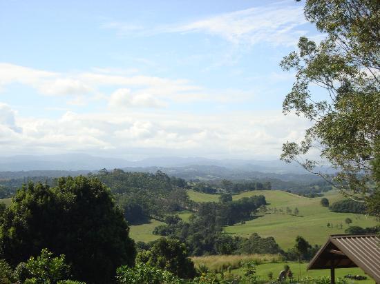 Gaia Retreat & Spa: Tranquility