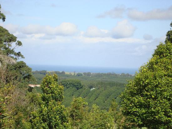 Gaia Retreat & Spa: Paradise