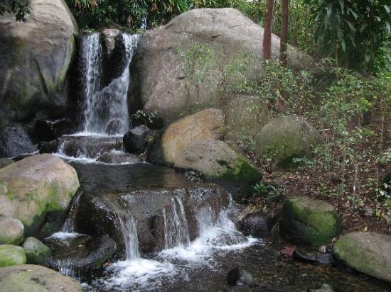 Makena Beach & Golf Resort: Waterfall in Japanese garden and koi pond at Makena Beach and Golf Resort (form