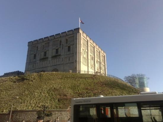Norwich Castle: yes its norwich and we do have a castle