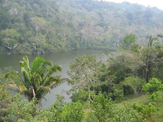 Chachapoyas, Peru: Northern Peruvian Rainforest