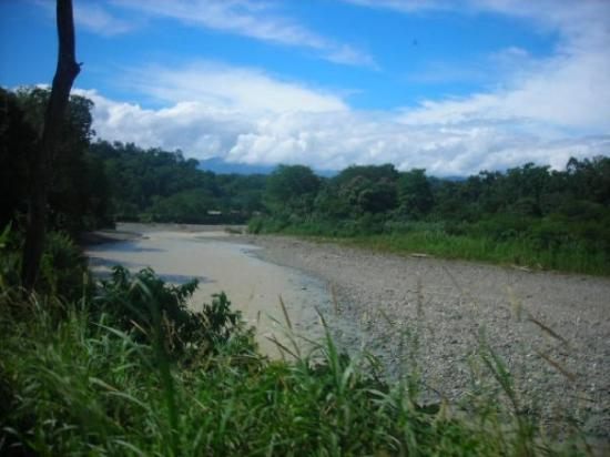 Puerto Limon, Costa Rica: the river we zip lined over ! 350 feet high!
