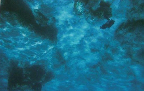 維京果島照片