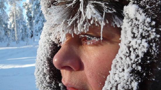 Tradition Hotel Kultahovi Inari: Really really cold!