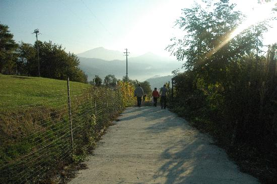 Agriturismo U Cantin: de toegangsweg