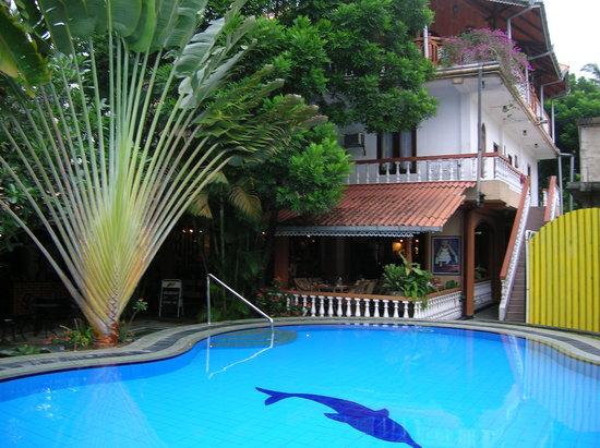 Flower Garden Hotel : Pool