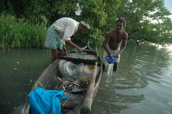 Heritage Methanam: Fishermen at work