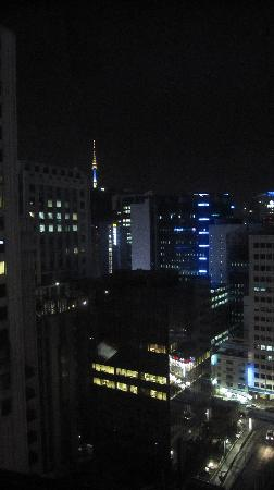 Lotte Hotel Seoul: the view from my room at night time