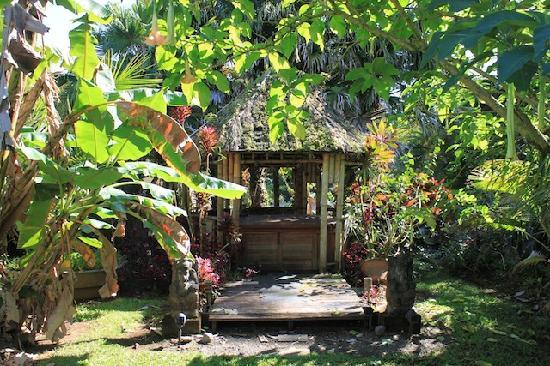 Pahoa, هاواي: Paradise