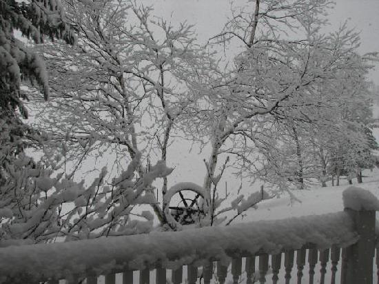 The Woods Inn: Winter Wonderland