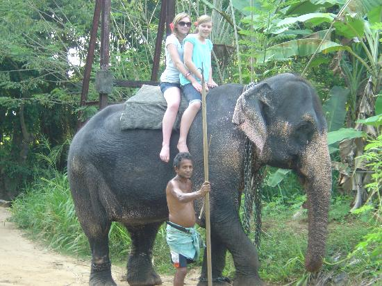 Turtle Bay: Me and my sister on the elephant