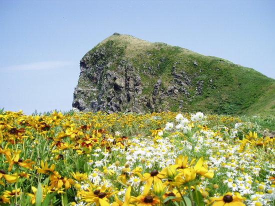 Peshi Misaki Observatory