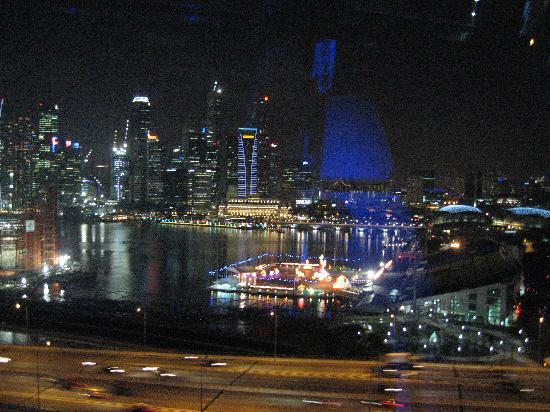 Hotel Miramar: night view from singapore flyer