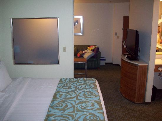 SpringHill Suites St. Louis Airport/Earth City: Room