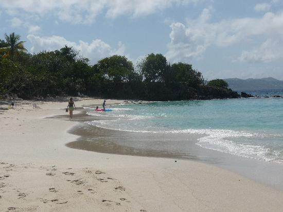 Hidden gem of caneel beach picture of st john u s virgin islands