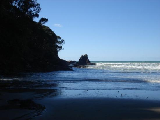 Wanaka Photo