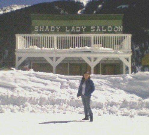 Shady Lady Restaurant Photo