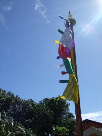 Paia, HI: beautiful prayer flags, spreading their message across the land