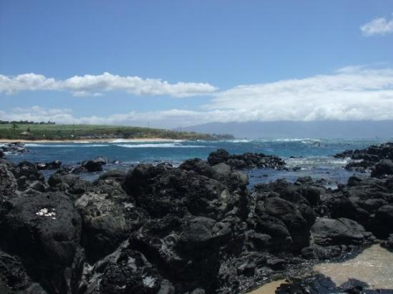 Paia, Hawái: rocks on the beach
