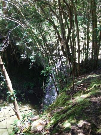 Haiku, Hawaï : Twin Falls