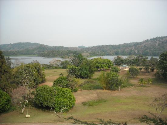 Gamboa Rainforest Resort: View from the room