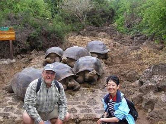 Puerto Ayora, Ecuador: Galapagos Islands, Ecuador