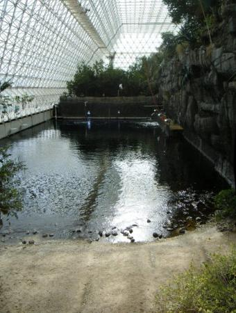 Oracle, AZ: Biosphere 2 - the ocean