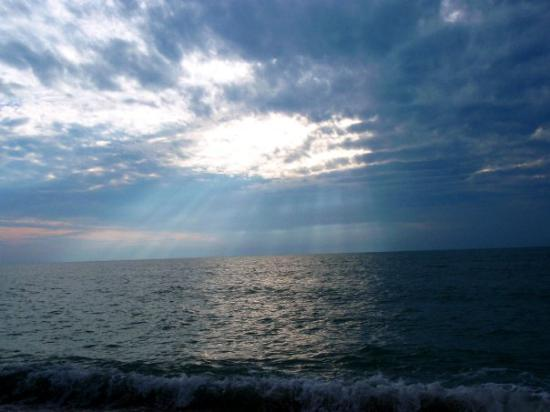 The Mighty Ocean - Picture of Sarasota, Southwest Gulf Coast ...