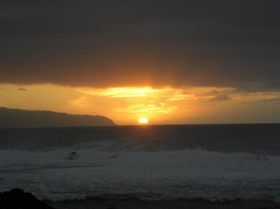 Foto de Horse Riding and Sunset at North Shore - Musashi Tours
