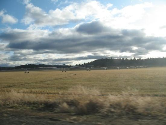 almost to Bonanza, Oregon... dairy farm country...